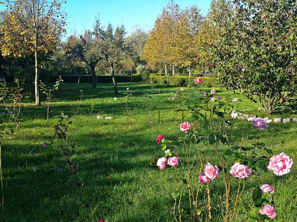 """Il Giardino del Parco """"Le Grazie"""" (Ph. Massimo Santafè)"""