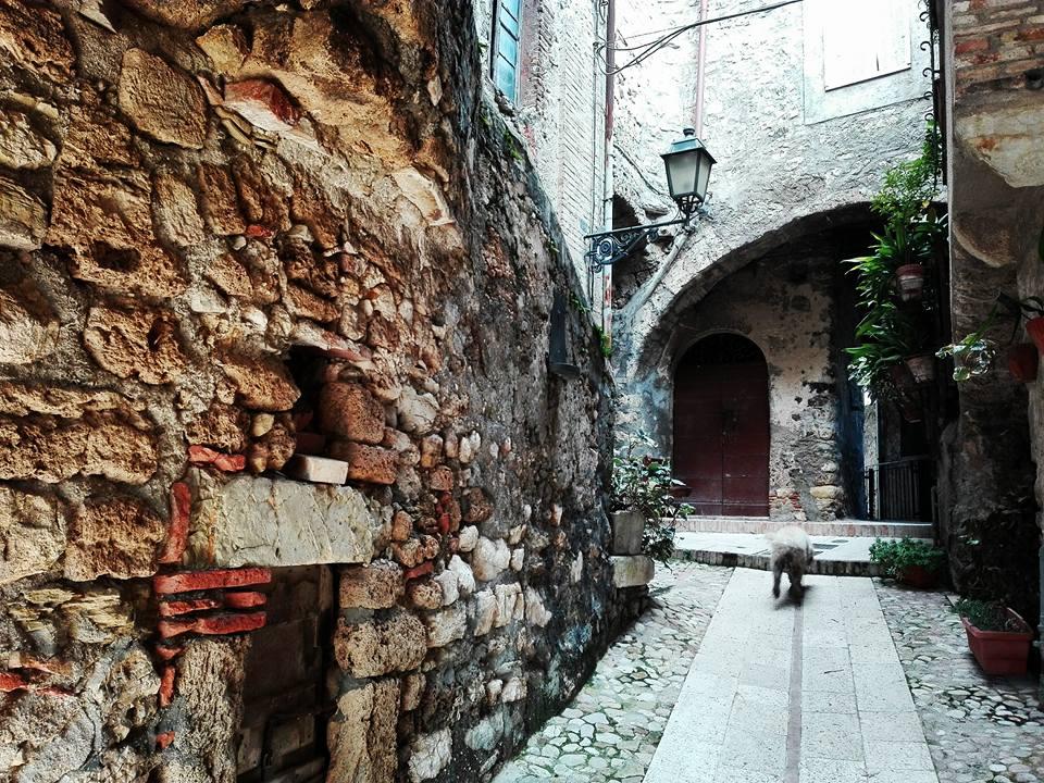 Scorcio di Torre Orsina Foto di Valeria Iacobellis)