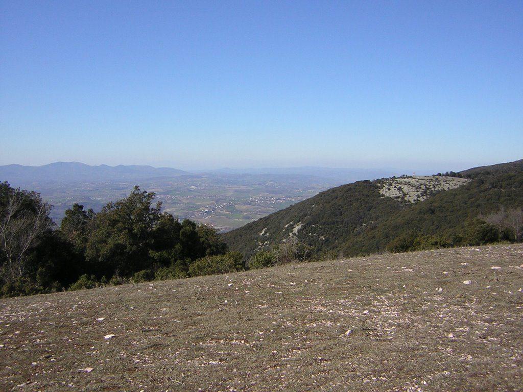 Panorama dalla cima del Torre Maggiore